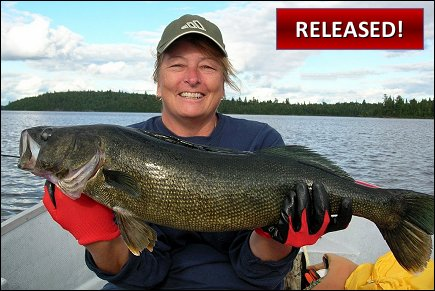 Walleye Quebec Fishing Lodges